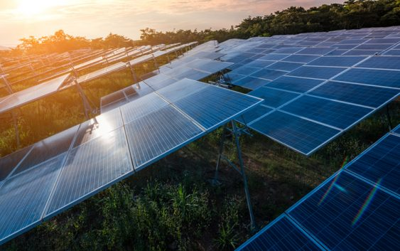 Australia's biggest solar farm proposed for Gympie
