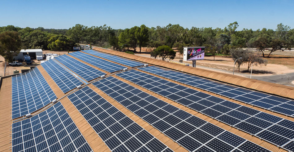 Solar Project Gives Hope To Struggling Grape Growers