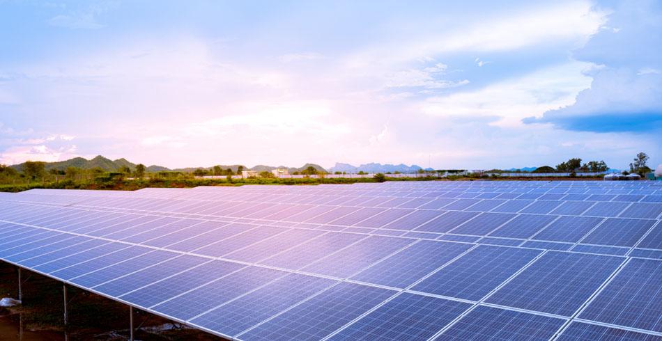 solar PV, Acciona, Labor